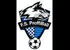 F.S. ProffiBall